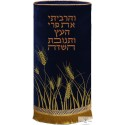 Robe Sefer torah